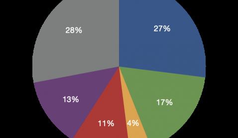 Reporte Inmobiliario MLS Vallarta 2020